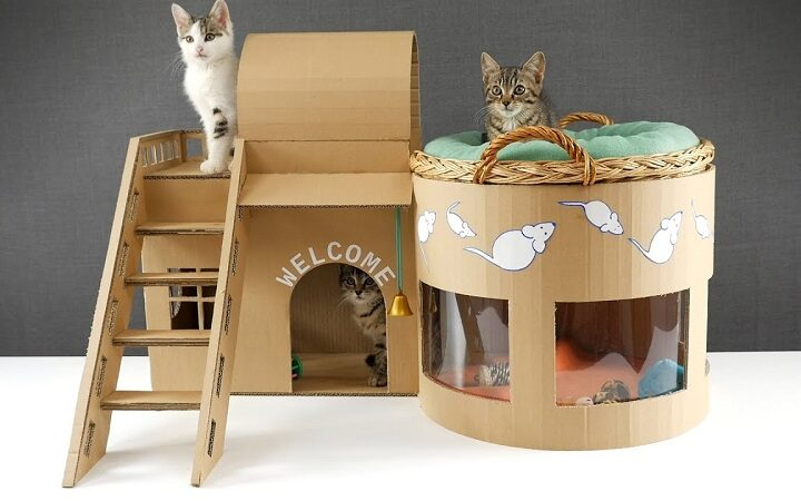 DIY Ideas to Make a Themed Cat House