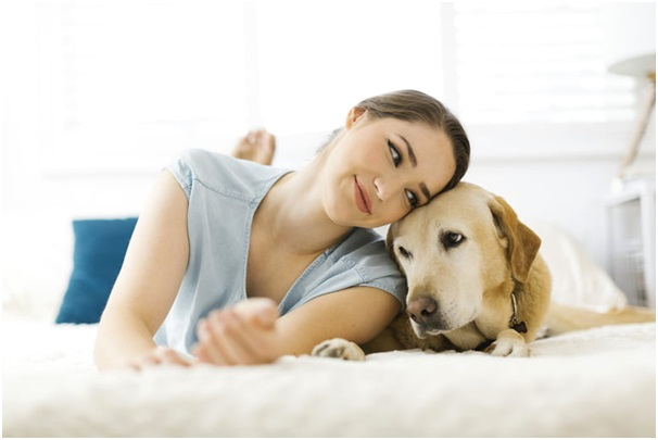 Trustworthy Pet Sitters For You